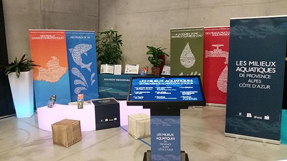 Découvrez nos expositions sur l'eau et les milieux aquatiques
